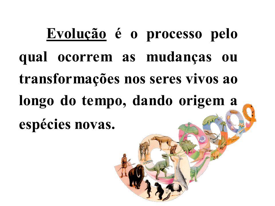 Evolução é o processo pelo qual ocorrem as mudanças ou transformações nos seres vivos ao longo do tempo, dando origem a espécies novas.