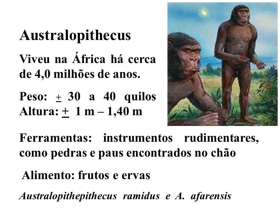 Australopithecus Viveu na África há cerca de 4,0 milhões de anos.