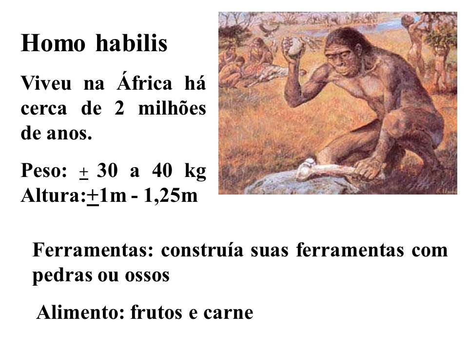 Homo habilis Viveu na África há cerca de 2 milhões de anos.