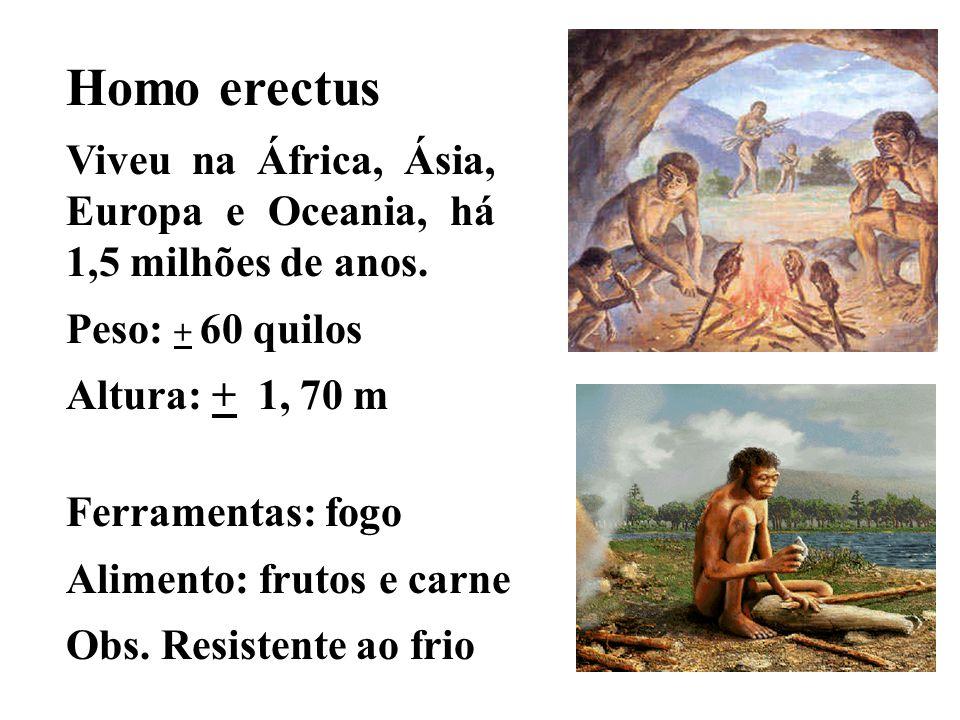 Homo erectus Viveu na África, Ásia, Europa e Oceania, há 1,5 milhões de anos. Peso: + 60 quilos. Altura: + 1, 70 m.