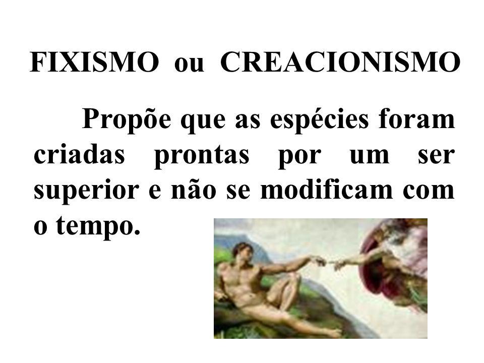 FIXISMO ou CREACIONISMO