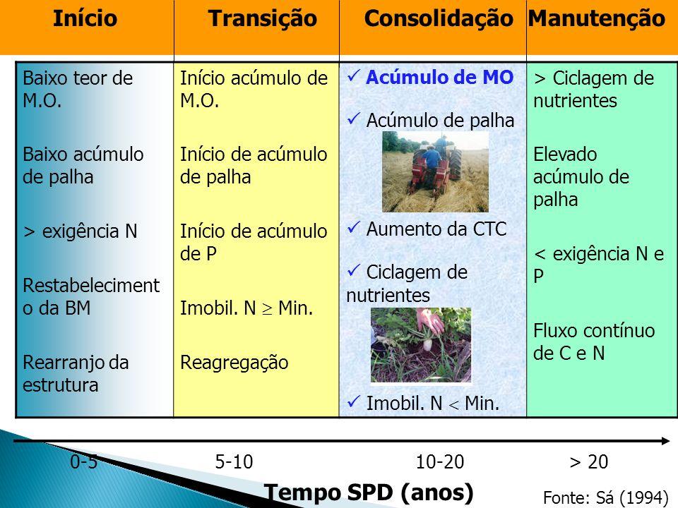 Início Transição Consolidação Manutenção