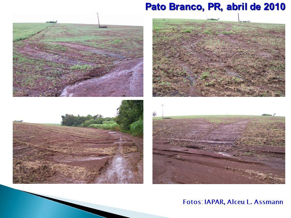 Fotos: IAPAR, Alceu L. Assmann