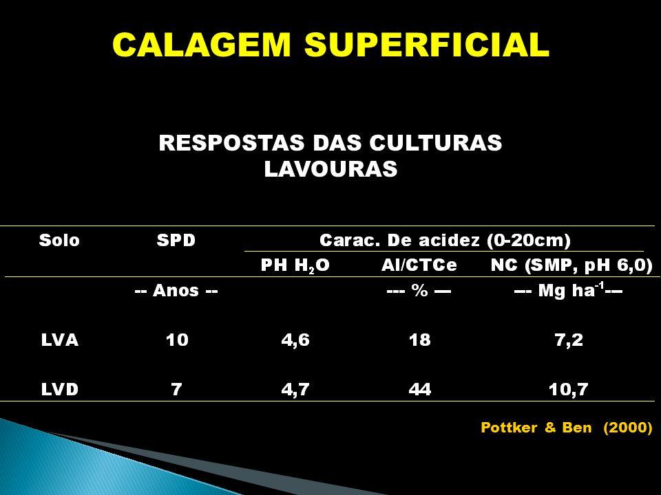 RESPOSTAS DAS CULTURAS