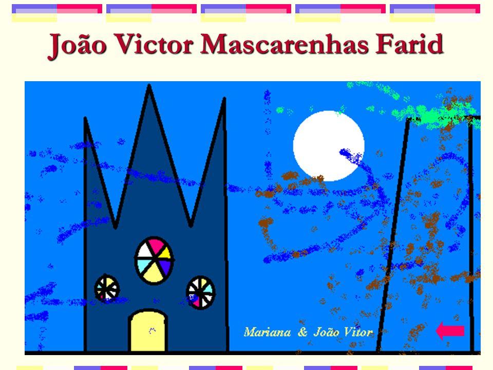 João Victor Mascarenhas Farid