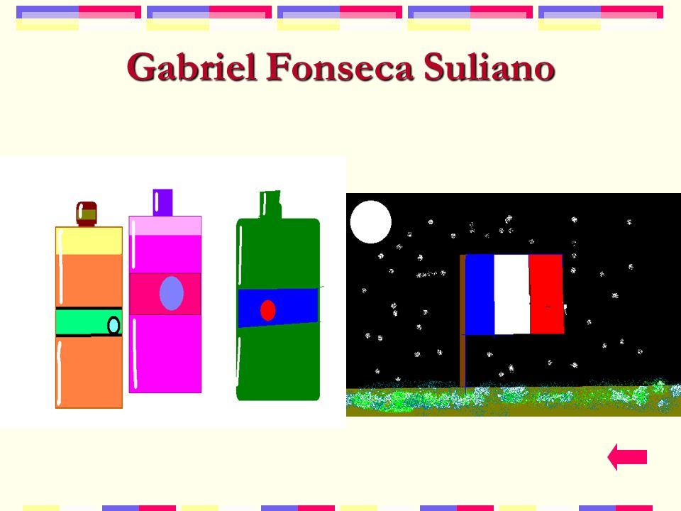 Gabriel Fonseca Suliano