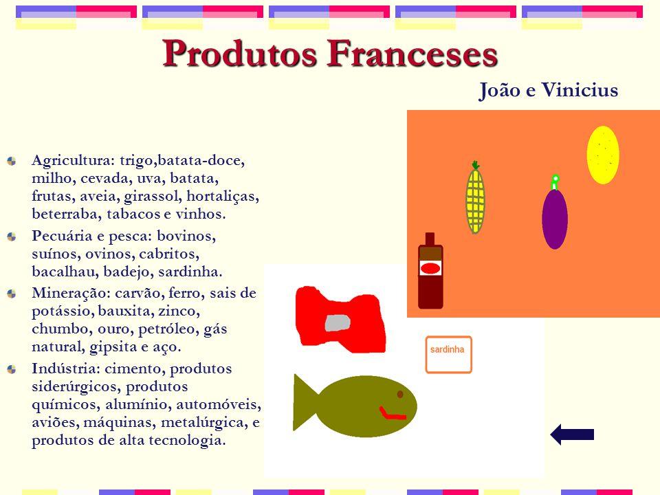 Produtos Franceses João e Vinicius
