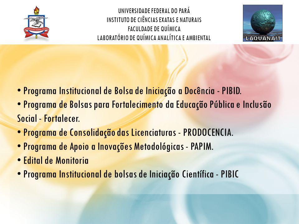 Programa Institucional de Bolsa de Iniciação a Docência - PIBID.
