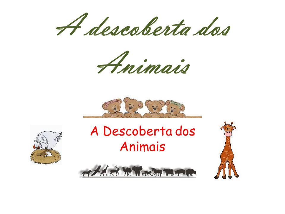 A descoberta dos Animais