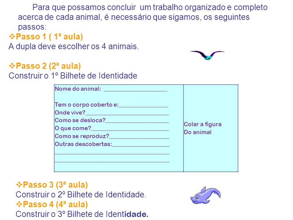 A dupla deve escolher os 4 animais. Passo 2 (2ª aula)