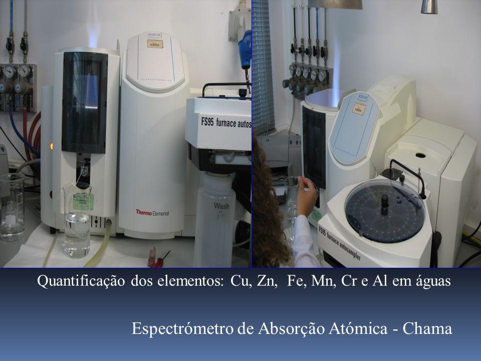 Quantificação dos elementos: Cu, Zn, Fe, Mn, Cr e Al em águas