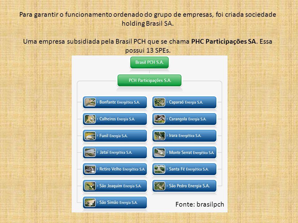 Para garantir o funcionamento ordenado do grupo de empresas, foi criada sociedade holding Brasil SA.