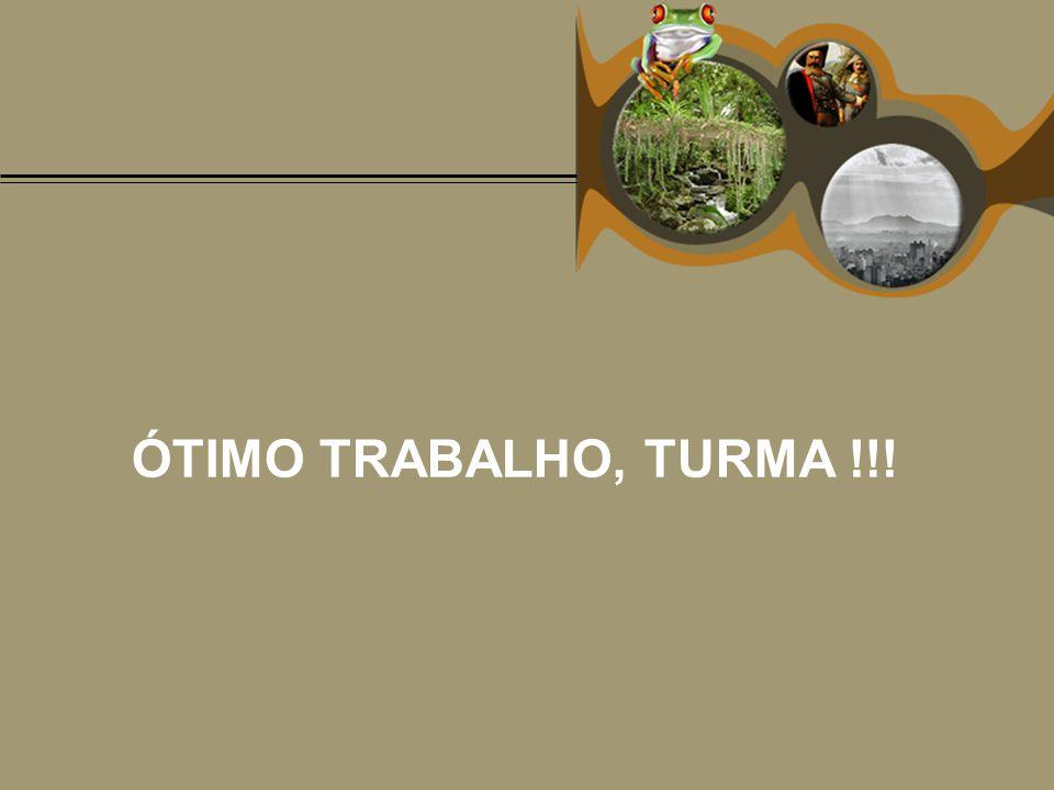 ÓTIMO TRABALHO, TURMA !!!