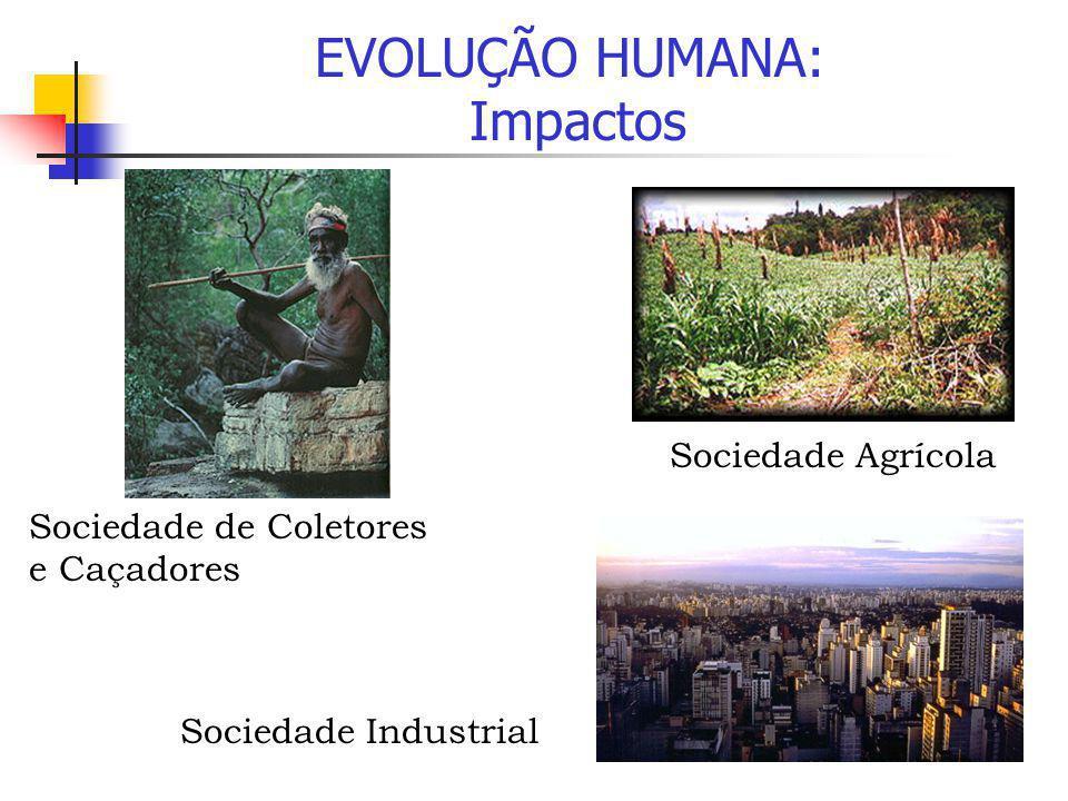 EVOLUÇÃO HUMANA: Impactos Sociedade Agrícola Sociedade de Coletores