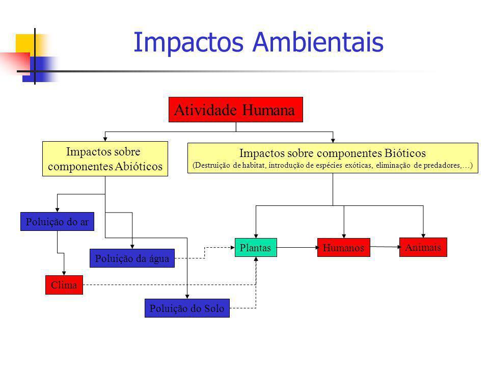 Impactos Ambientais Atividade Humana Impactos sobre