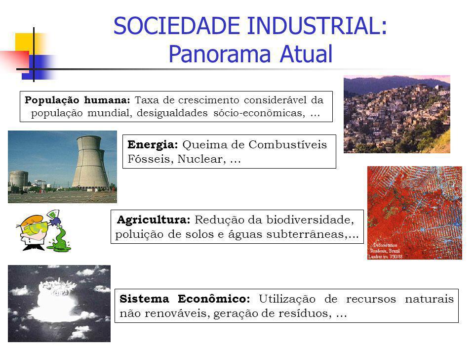 SOCIEDADE INDUSTRIAL: Panorama Atual