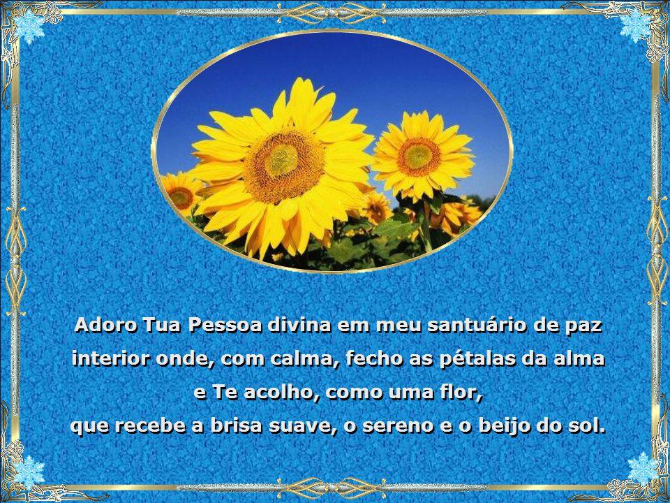 Adoro Tua Pessoa divina em meu santuário de paz