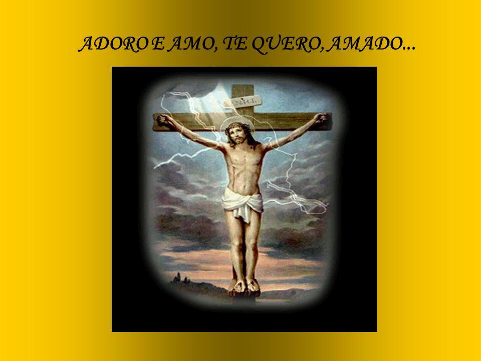 ADORO E AMO, TE QUERO, AMADO...