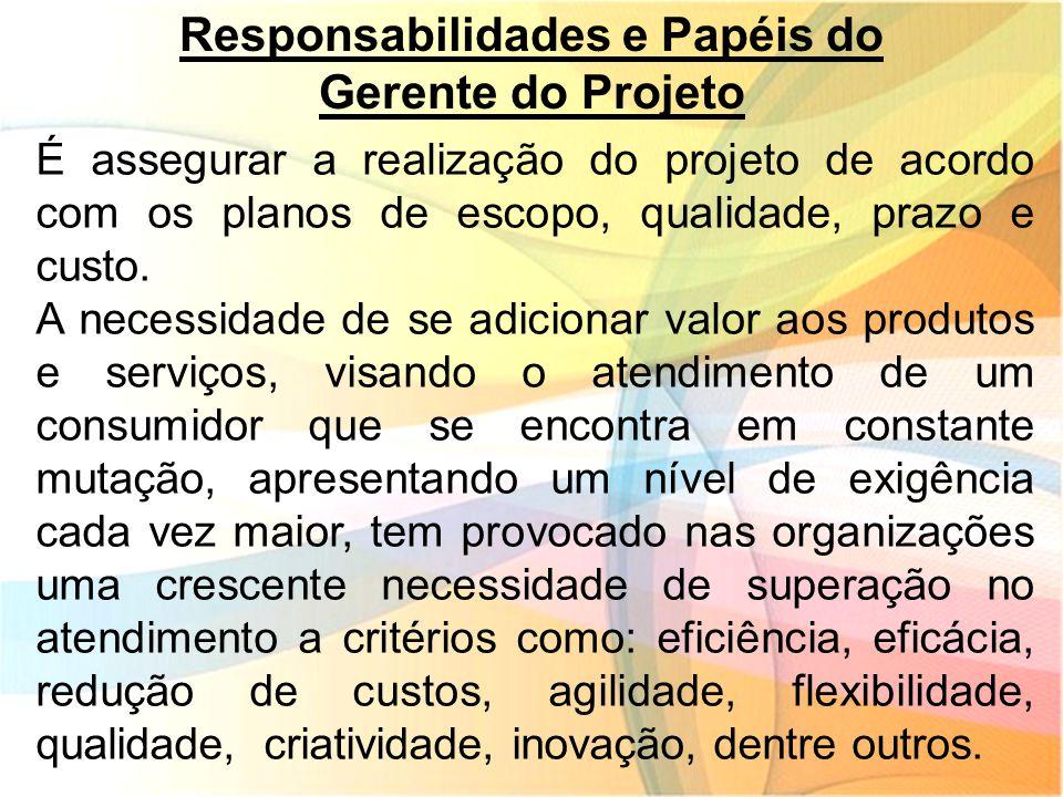 Responsabilidades e Papéis do