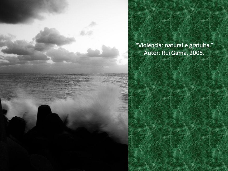 Violência: natural e gratuita. Autor: Rui Gama, 2005.