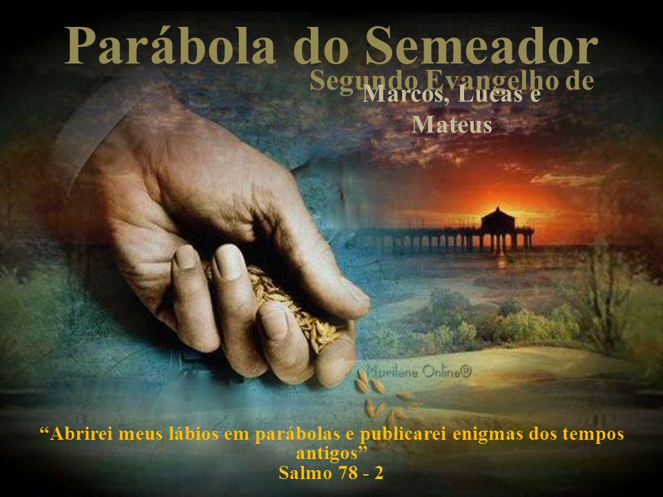 Parábola do Semeador Segundo Evangelho de Marcos, Lucas e Mateus