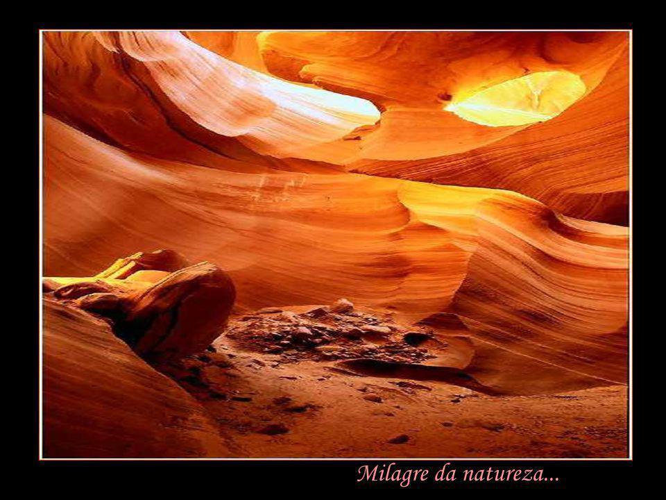 Milagre da natureza...
