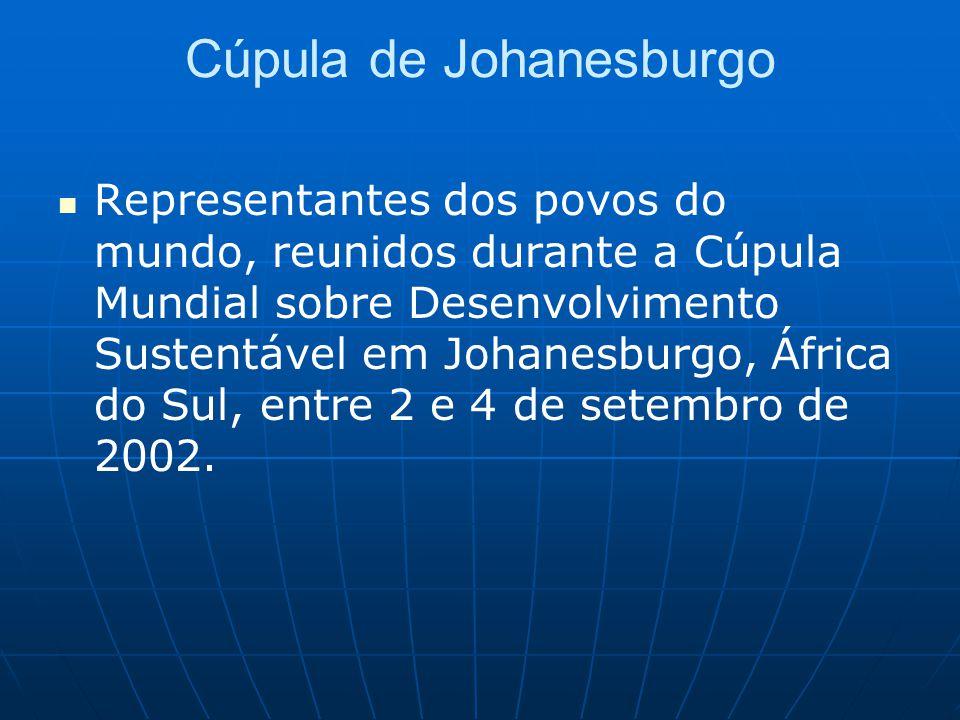 Cúpula de Johanesburgo