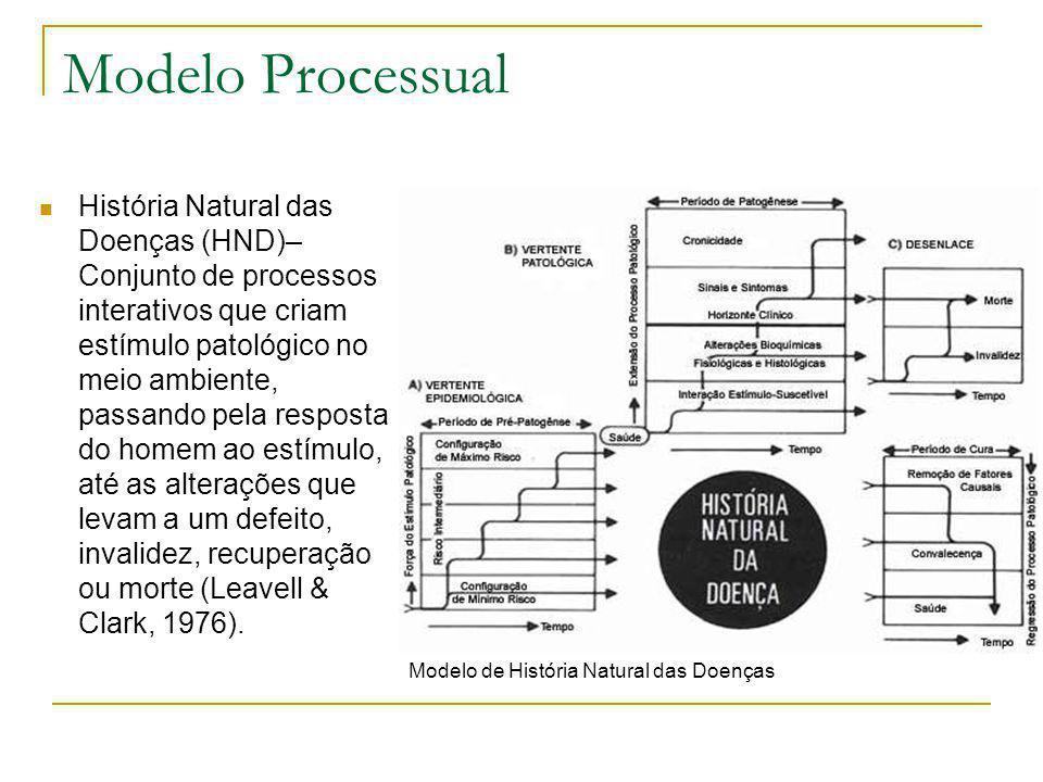 Modelo Processual