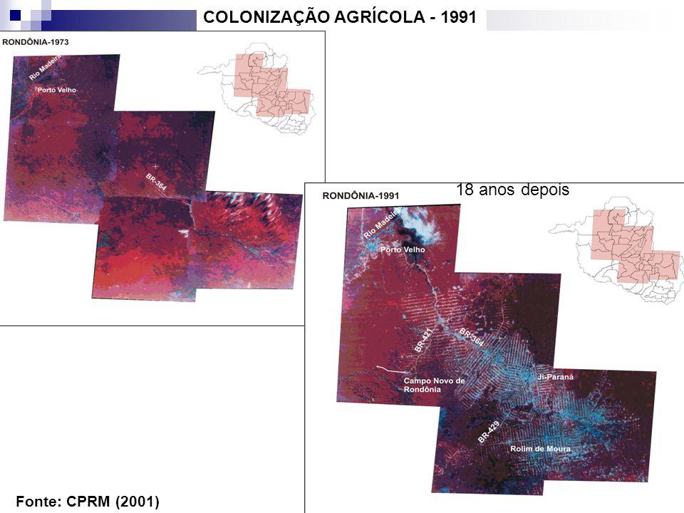 COLONIZAÇÃO AGRÍCOLA - 1991