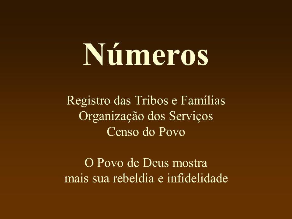 Números Registro das Tribos e Famílias Organização dos Serviços Censo do Povo O Povo de Deus mostra mais sua rebeldia e infidelidade