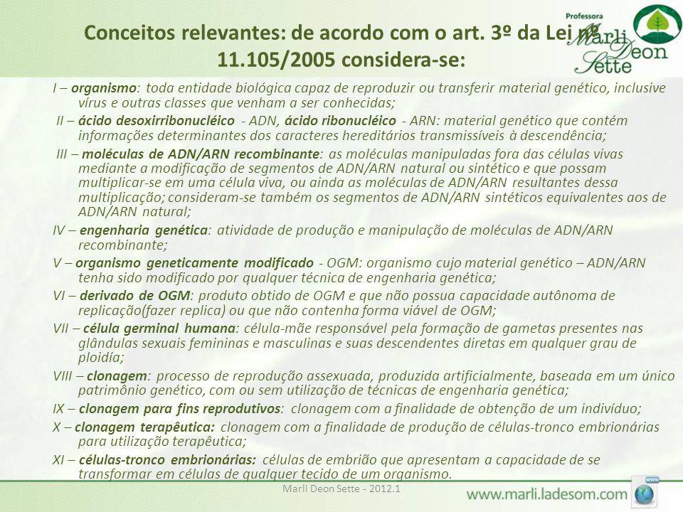 Conceitos relevantes: de acordo com o art. 3º da Lei nº 11