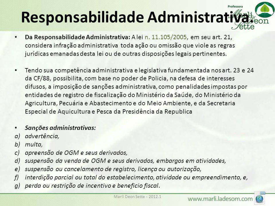 Responsabilidade Administrativa.