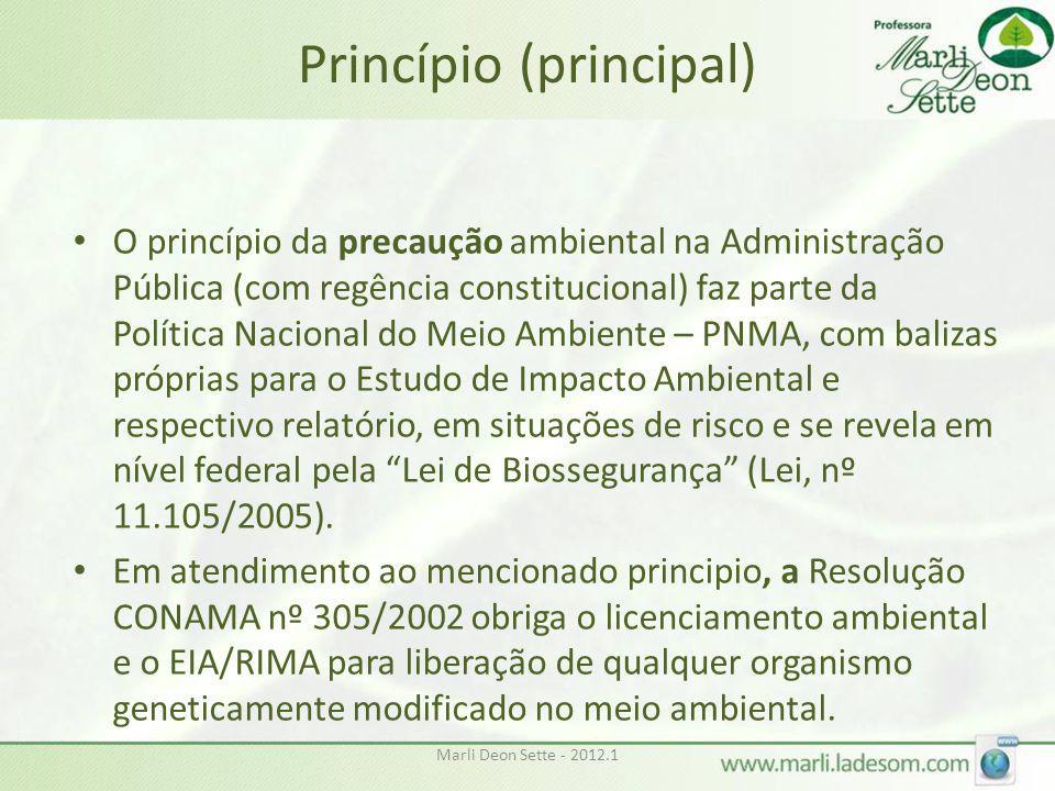 Princípio (principal)