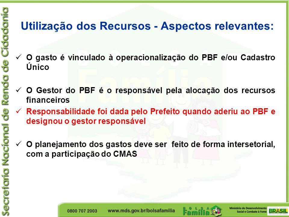 Utilização dos Recursos - Aspectos relevantes: