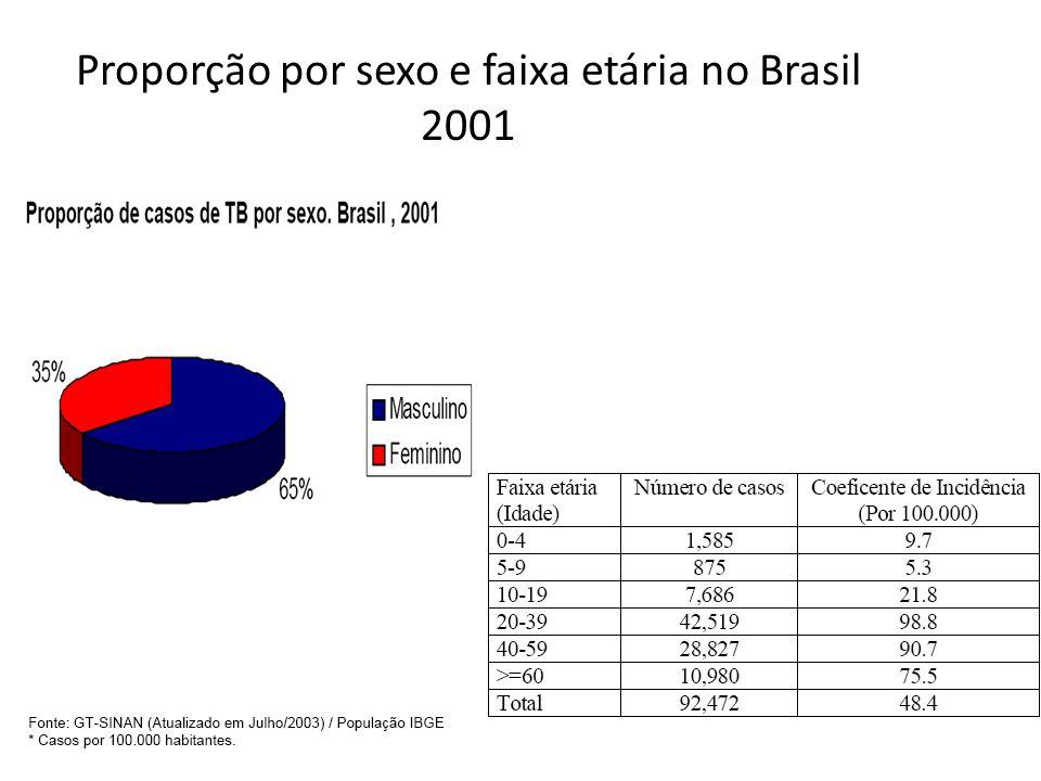 Proporção por sexo e faixa etária no Brasil 2001