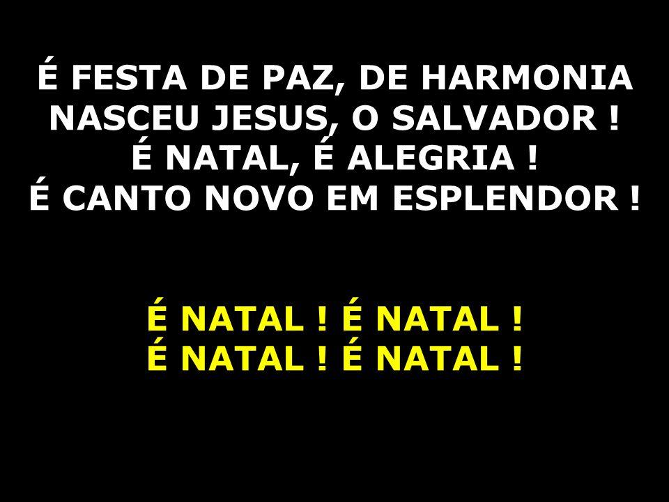 É FESTA DE PAZ, DE HARMONIA NASCEU JESUS, O SALVADOR !