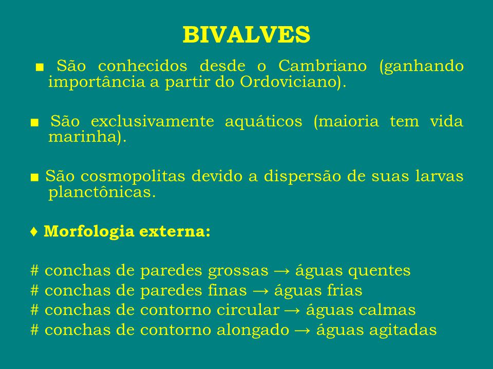 BIVALVES ■ São conhecidos desde o Cambriano (ganhando importância a partir do Ordoviciano).