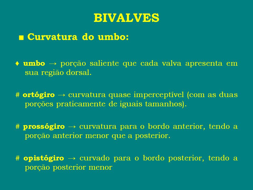 BIVALVES ■ Curvatura do umbo: