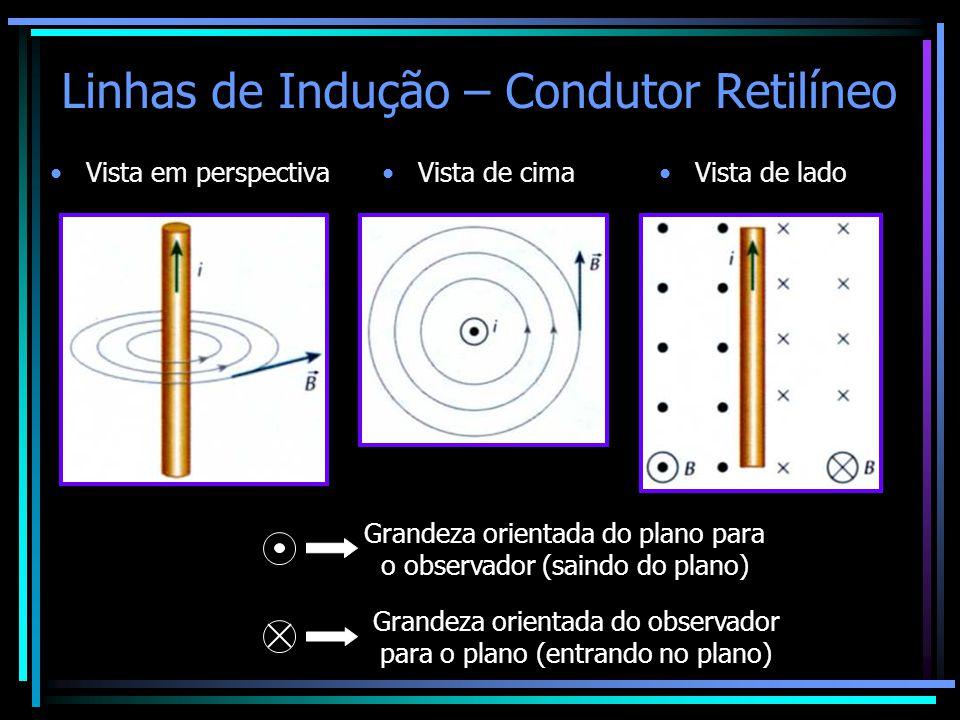 Linhas de Indução – Condutor Retilíneo