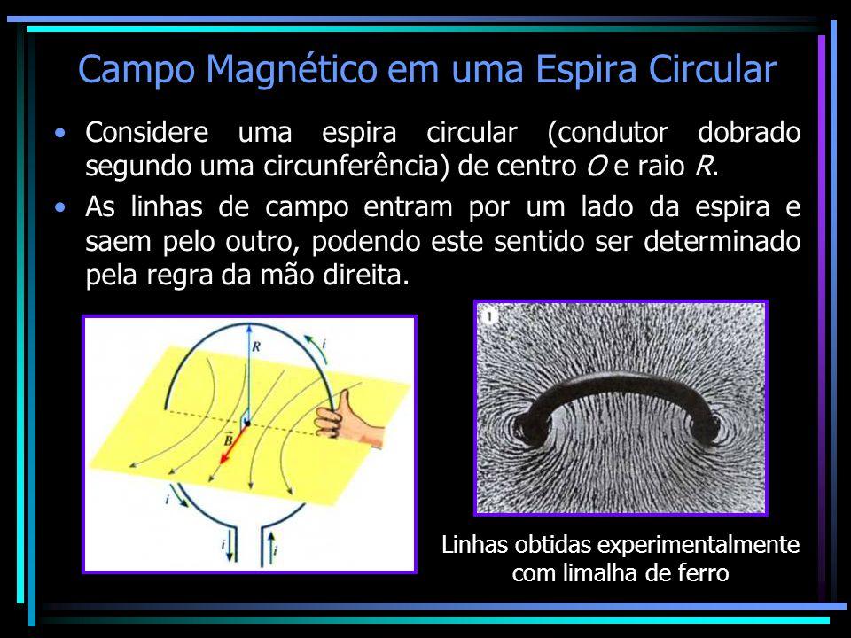 Campo Magnético em uma Espira Circular