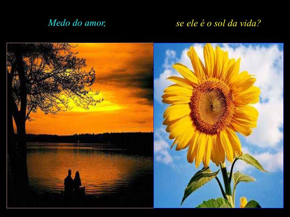 Medo do amor, se ele é o sol da vida .