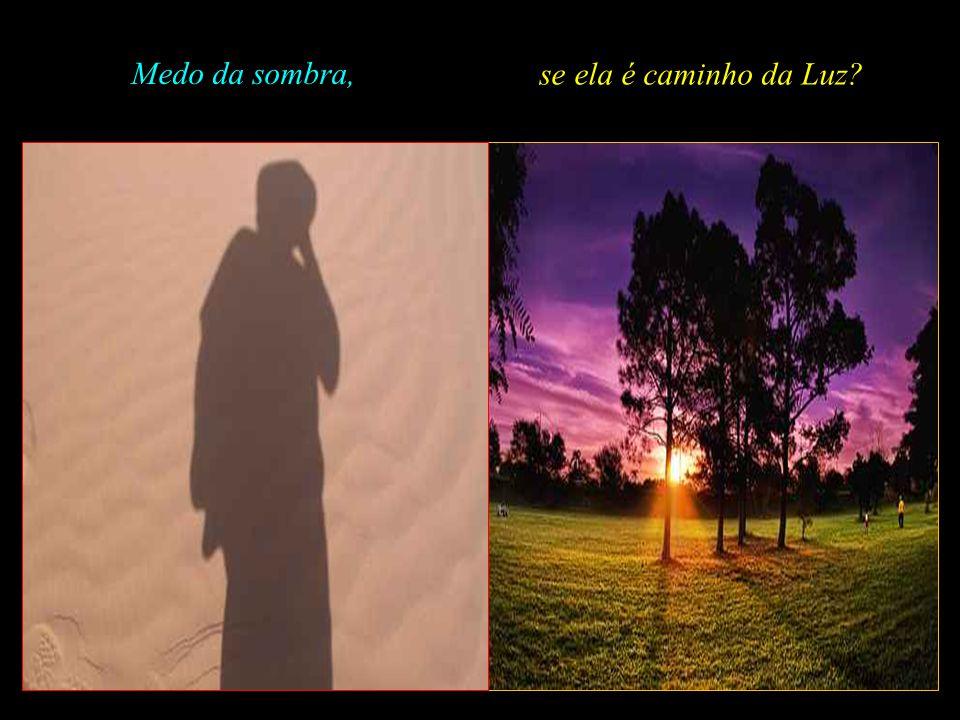 Medo da sombra, se ela é caminho da Luz .
