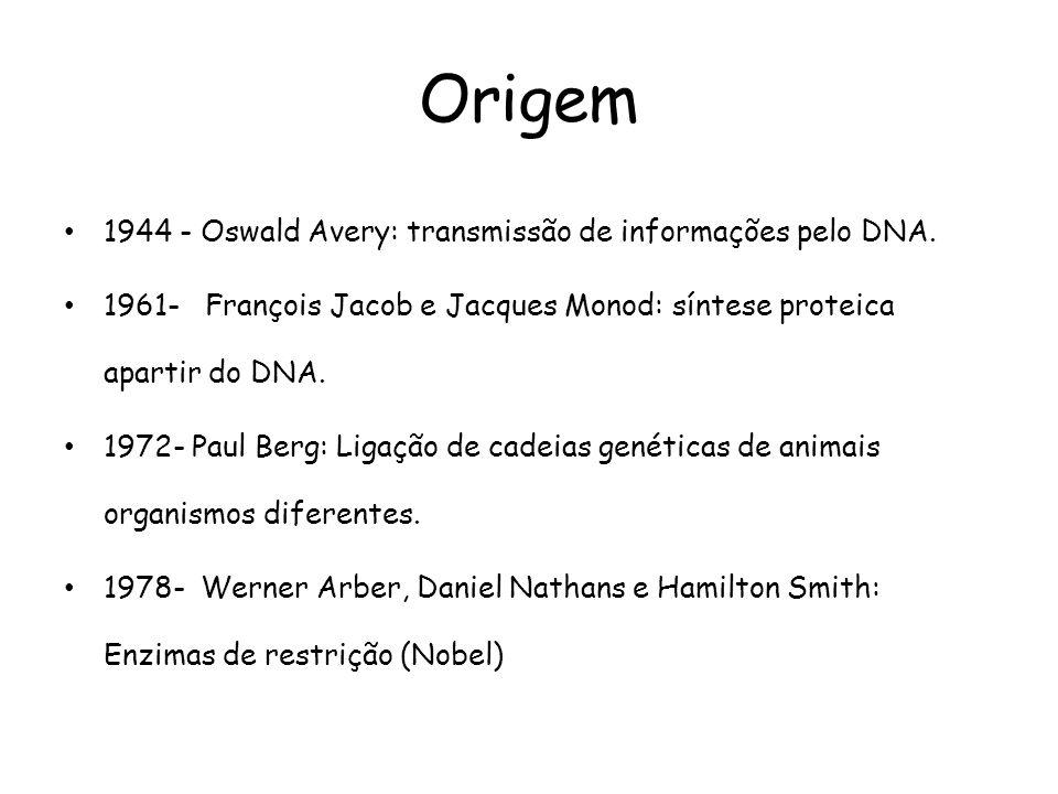 Origem 1944 - Oswald Avery: transmissão de informações pelo DNA.
