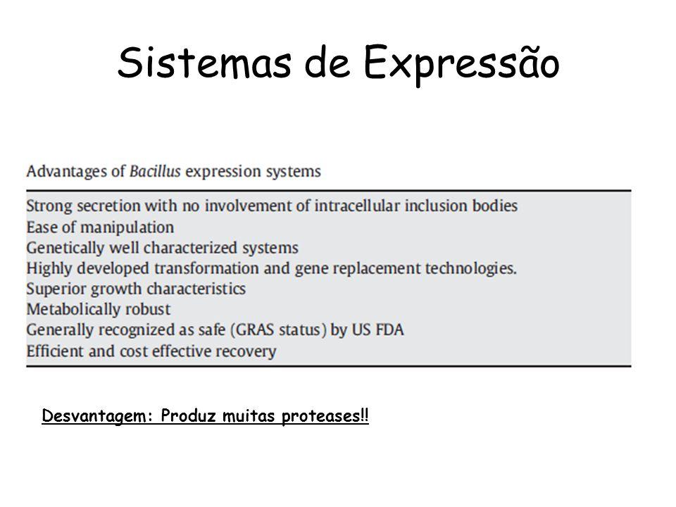 Sistemas de Expressão Desvantagem: Produz muitas proteases!!