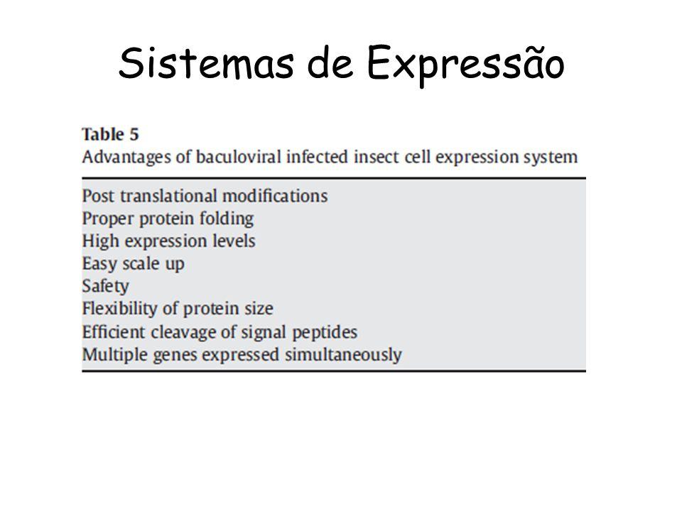 Sistemas de Expressão