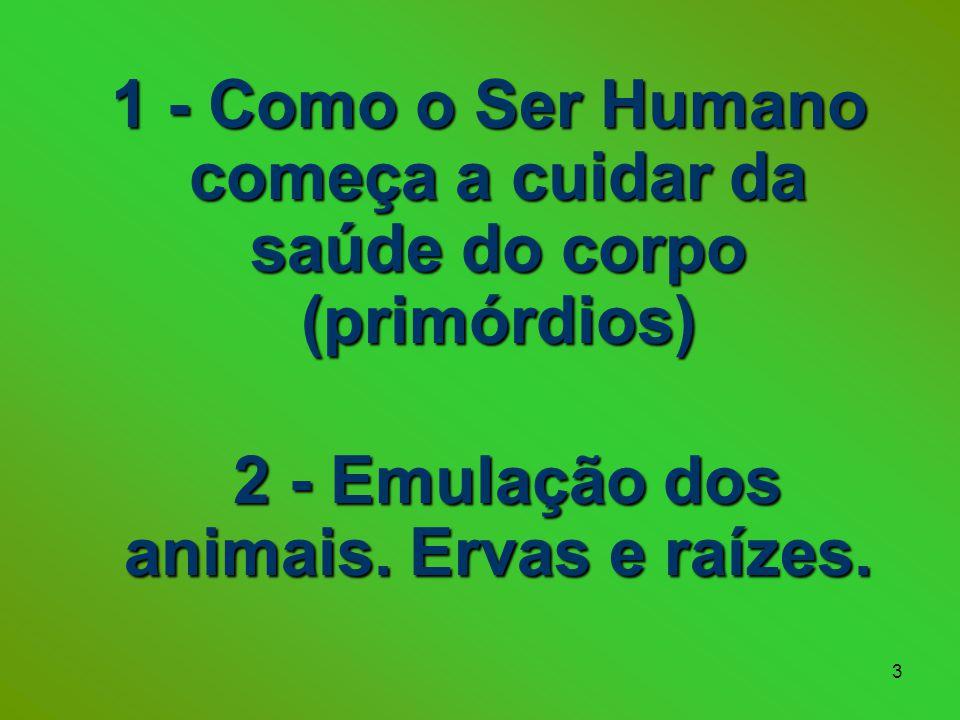 1 - Como o Ser Humano começa a cuidar da saúde do corpo (primórdios)