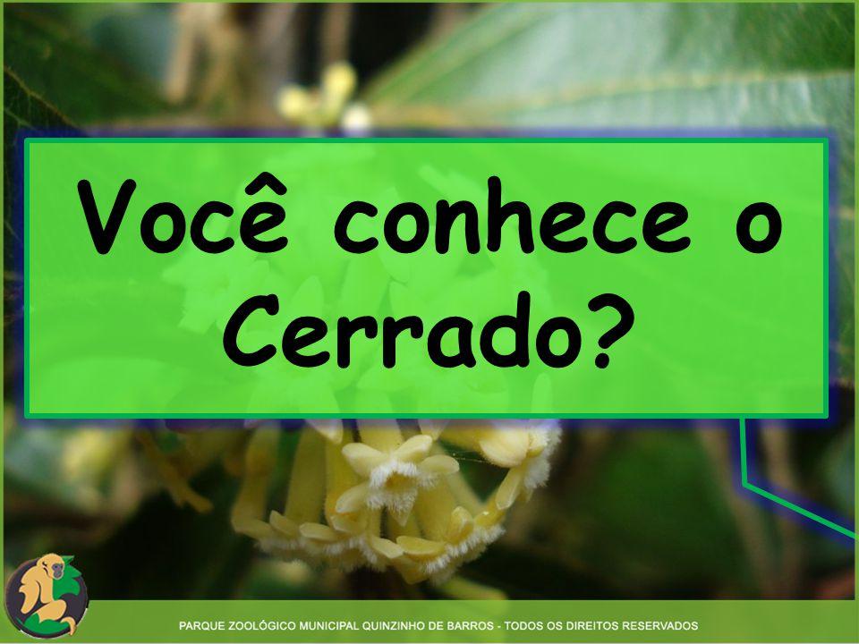 Você conhece o Cerrado