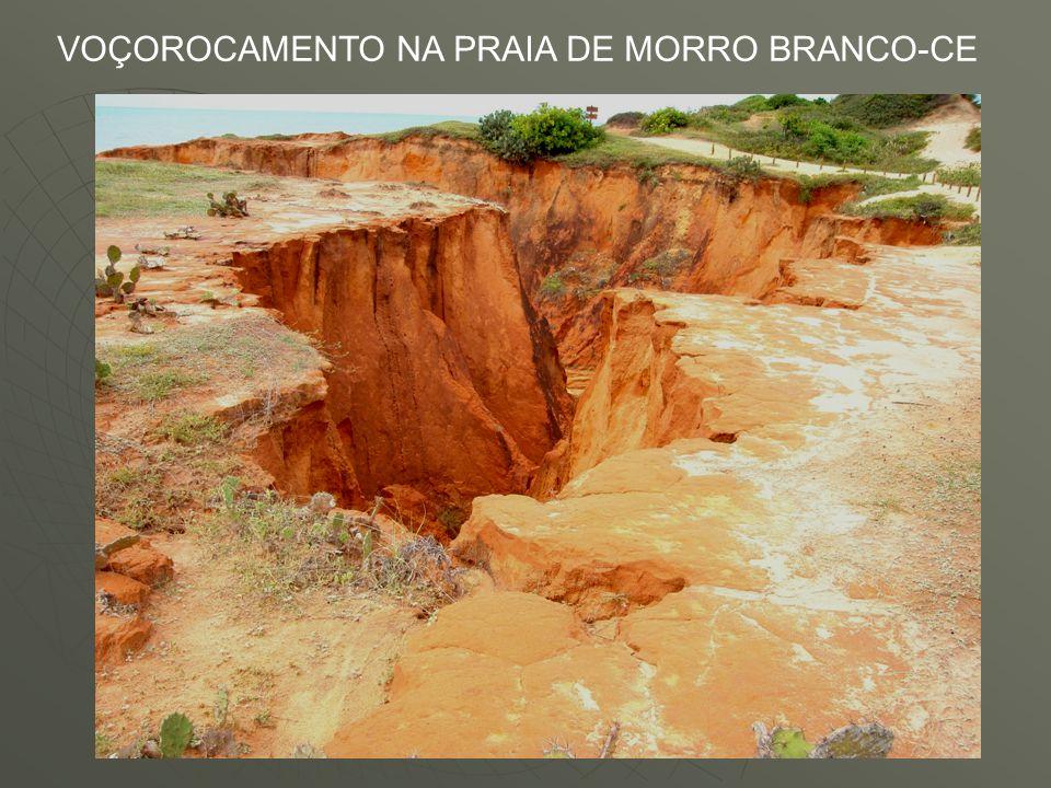 VOÇOROCAMENTO NA PRAIA DE MORRO BRANCO-CE