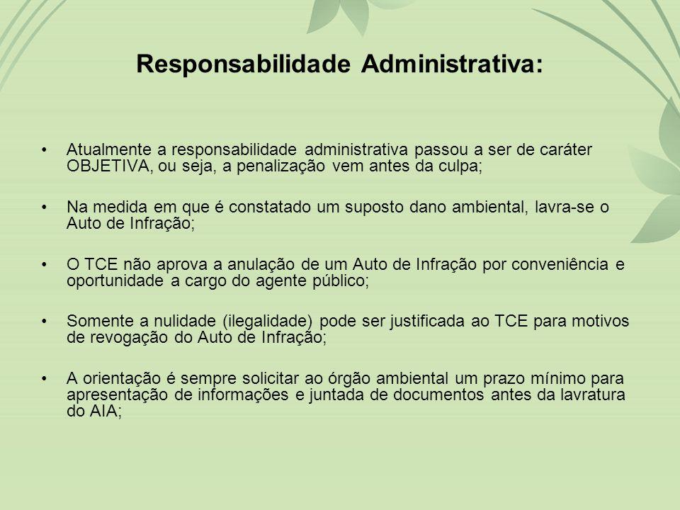 Responsabilidade Administrativa:
