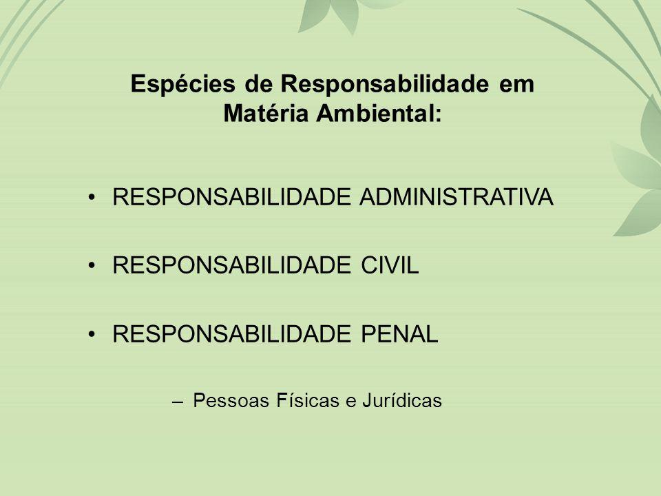 Espécies de Responsabilidade em Matéria Ambiental: